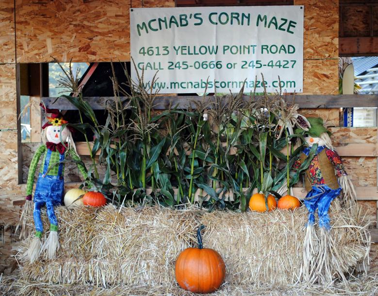 McNab's Corn Maze