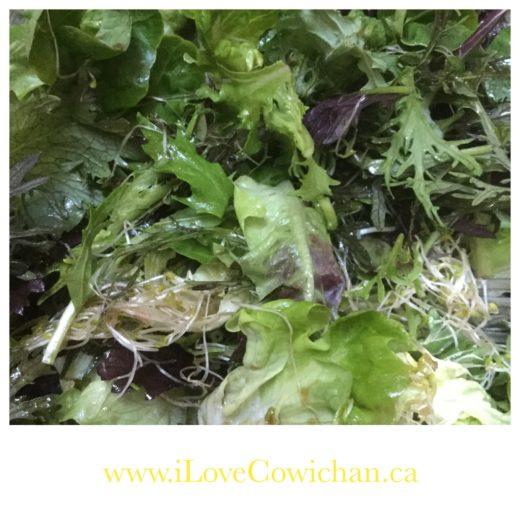 Salad Recipes Image