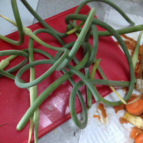 Garlic Scapes I Love Cowichan Vegetable Recipe Page Image