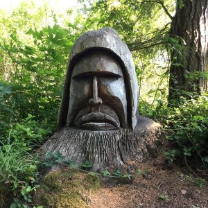 Face Carving Recreation Road Shawnigan Lake BC