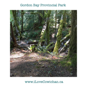Gordon Bay Provincial Park Cowichan Lake Vancouver Island BC