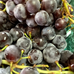 Grapes Grown in Cowichan BC