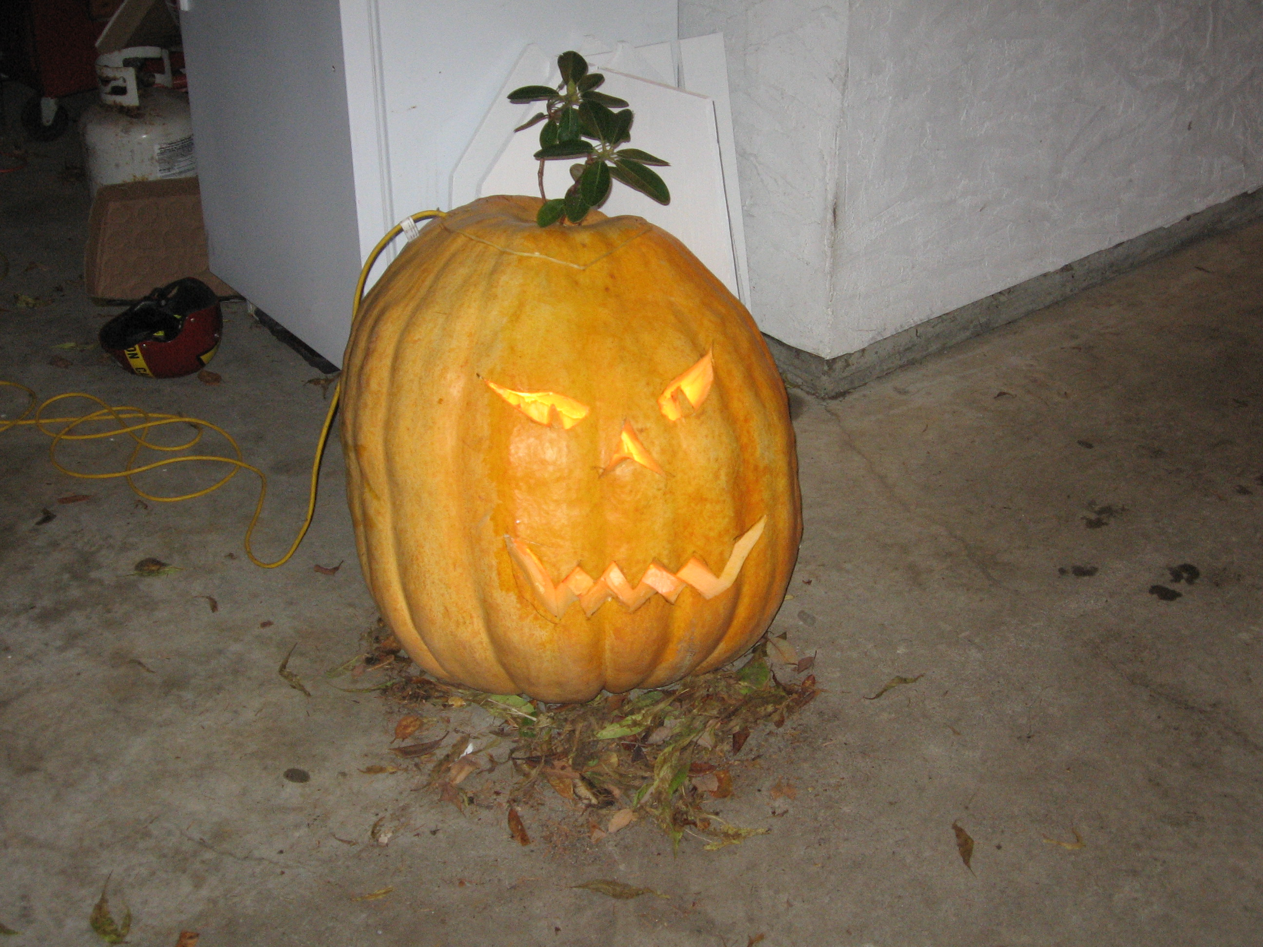 carved pumkin