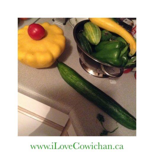Cucumber Recipe