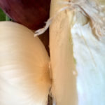 Cowichan Valley Fresh Veggie Soup Recipe Ingredients Onions