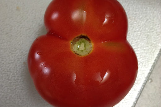 I Love Cowichan Tomato Recipe Post Feature Image