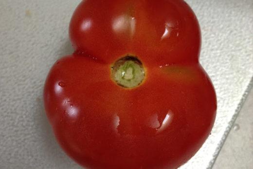 I Love Cowichan Tomato Recipe Post Feature Image
