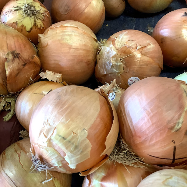 Local Onions at Russell Farms Market Cowichan Valley BC