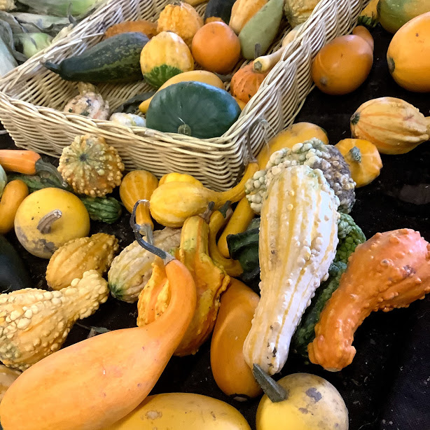 Squash at Russell Farms Markets Crofton BC